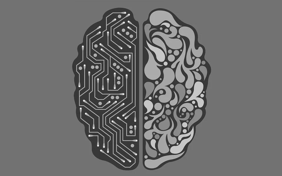 internet sentidos cerebro.png